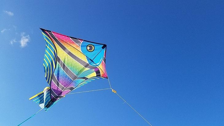 אירועי סוכות בחינם 2017: עפיפון בצורת דג בשמיים