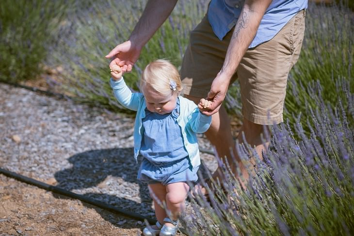 כיצד ללמד פעוטות ללכת: אב אוחז בידיה של ביתו כשהיא הולכת בשדה