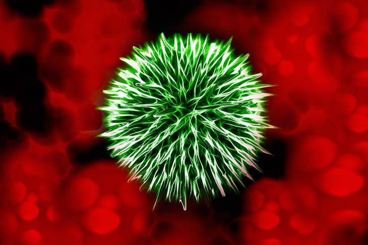 תסמיני אלח דם: איור של זיהום בדם