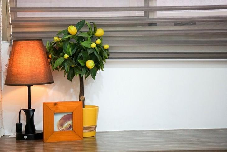 טיפים להתגברות על דיכאון בעזרת עיצוב הבית: עציץ, מנורה ומסגרת כתומה עומדים זה לצד זה על רהיט עץ