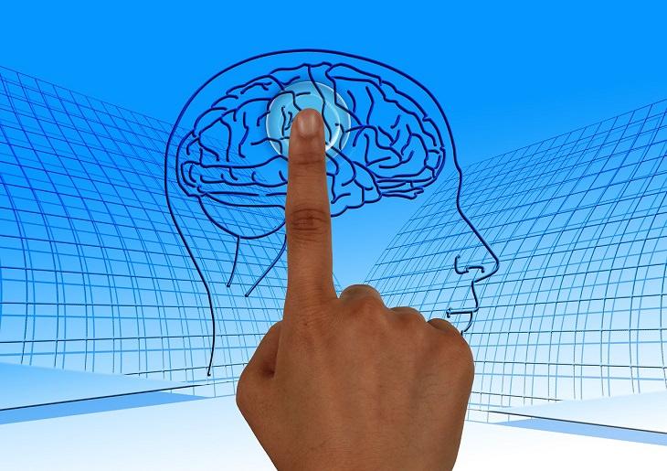 שיטות לשיפור הזכרון: איור של מוח ואצבע אנושית לוחצת עליו