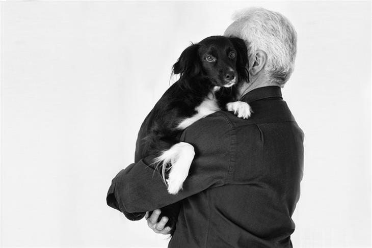 טעויות עם חיות המחמד: איש מחזיק בידיו כלב