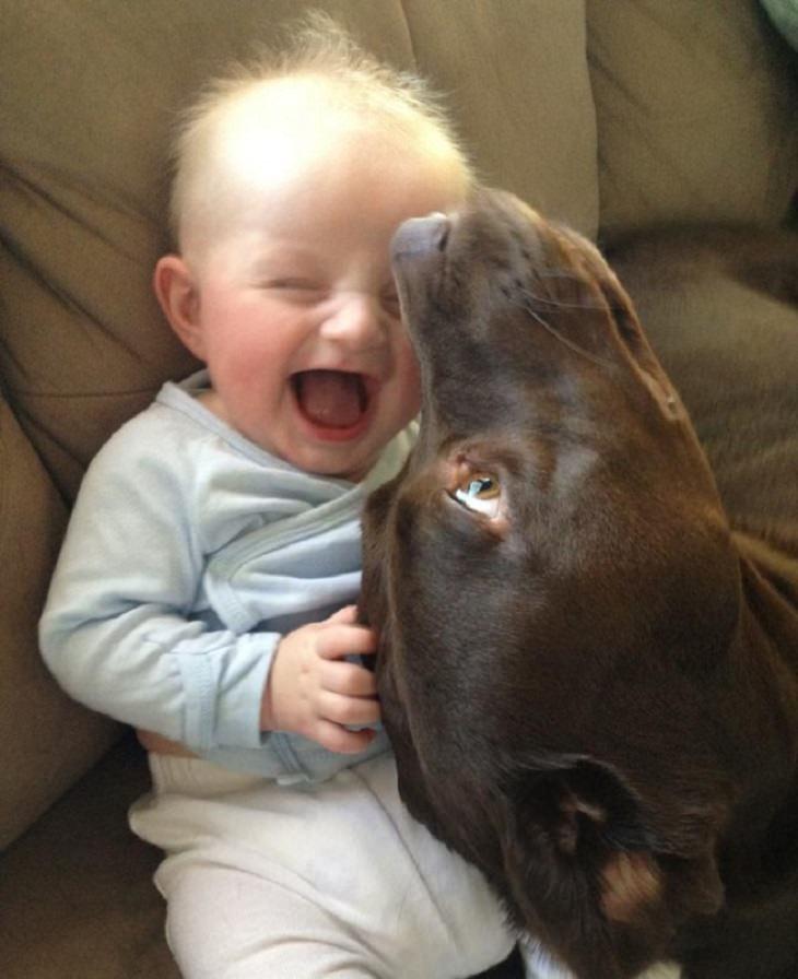 תמונות של חיות שמעלות חיוך: ילד קטן עם חיוך גדול ולצידו כלב