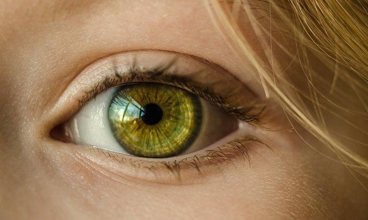 היתרונות הבריאותיים של הקולרבי: עין של אשה