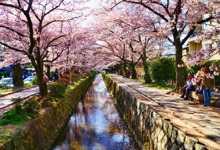 הרחובות היפים ביותר בעולם: שביל הפילוסופים שבקיוטו