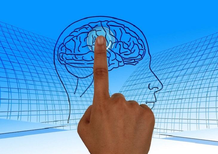טריקים לשיפור תפקידי המוח והגוף: אצבע לוחצת על אירו של מוח אנושי