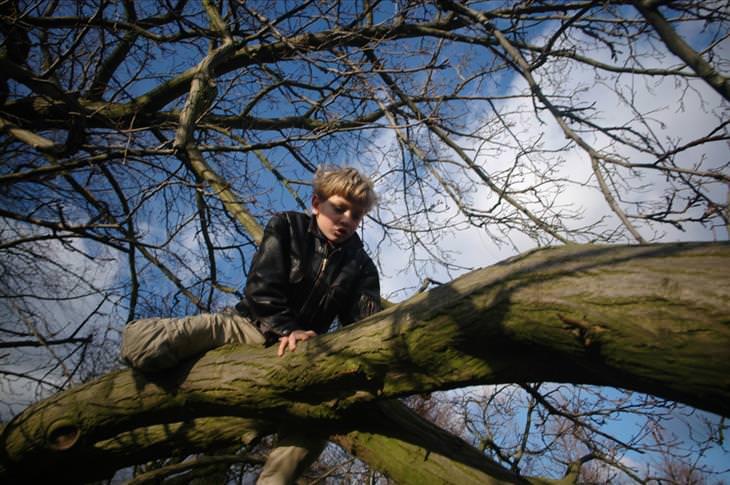 האזהרה הכללית שהורים חייבים להפסיק להגיד לילדים: ילד מטפס על עץ