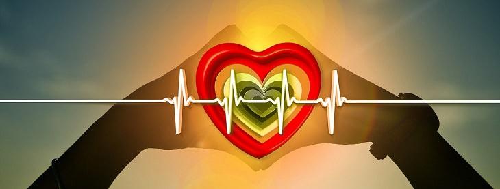 משקה לבריאות הלב וכלי הדם: איור של ידיים אוחזות בלב