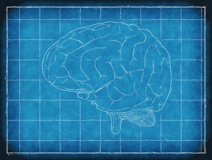 פריצות דרך רפואיות בשנת 2017: איור ממוחשב של מוח