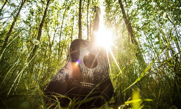 המדריך לבוקר המושלם: גיטרה ביער