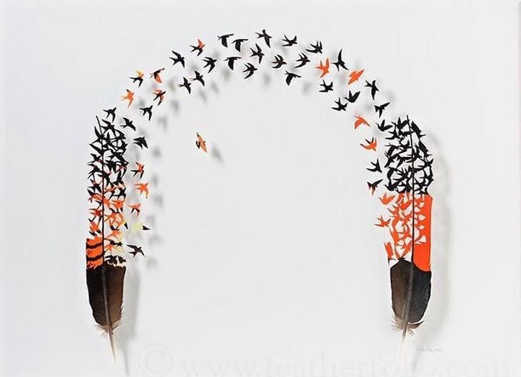 יצירות קטנות מנוצות: ציפורים מרחפות בין שתי נוצות