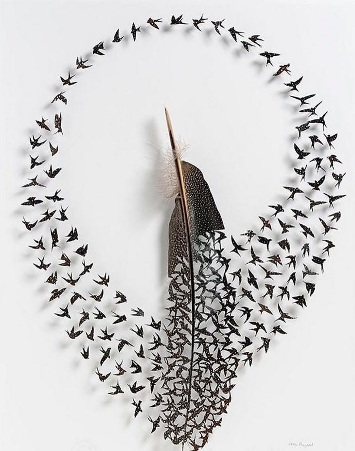 יצירות קטנות מנוצות: ציפורים חגות סביב נוצה