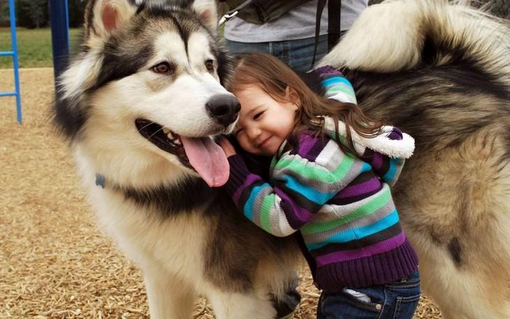 ילדה מחבקת כלב גדול