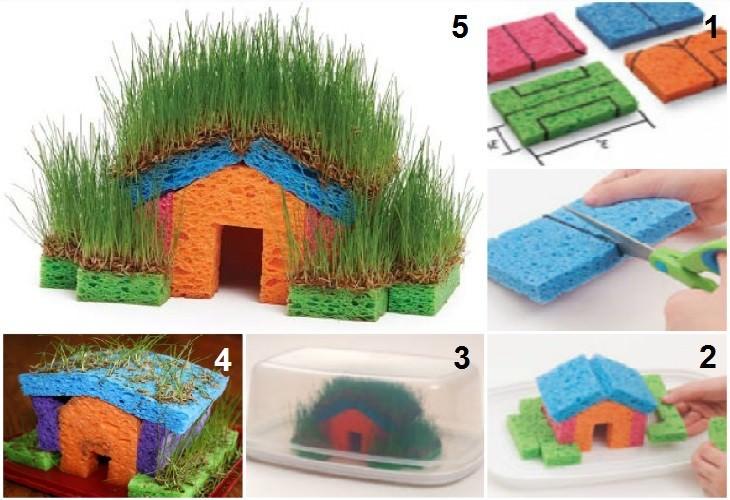 שלבי הכנה של בית דשא מונח מספוגים
