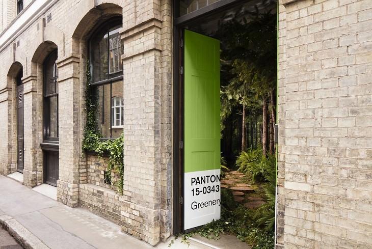 דלת ירוקה נפתחת ומציגה בית מיוער