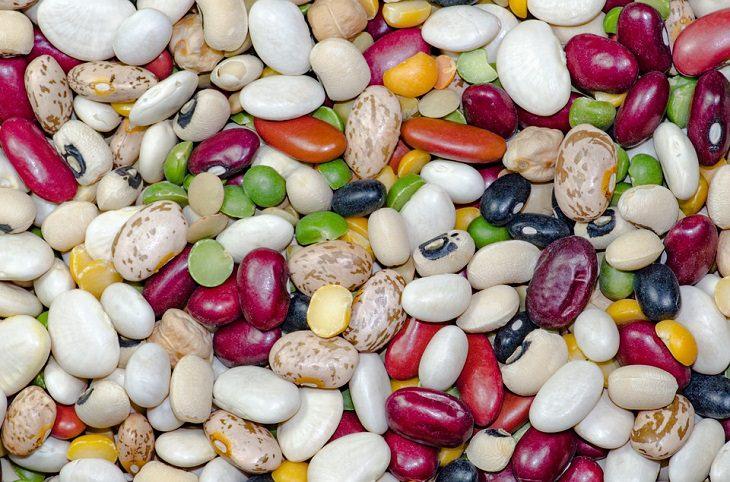 מזונות על מומלצים לילדים: שעועית במגוון סוגים וצבעים