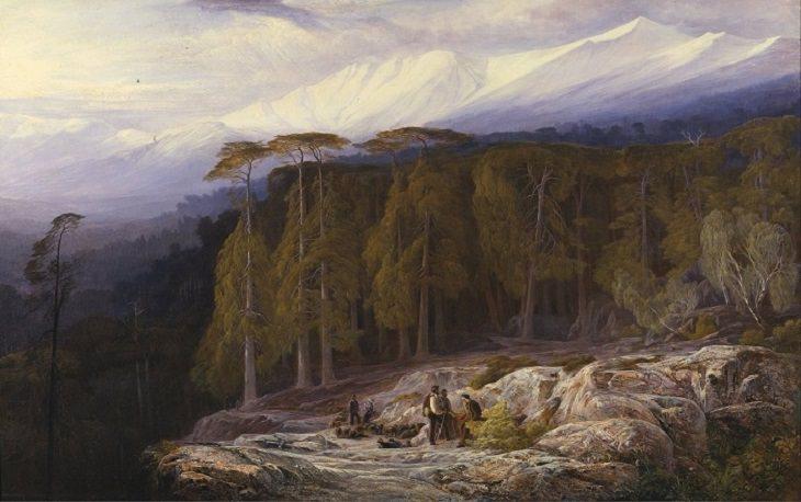 איור של אנשים ביער