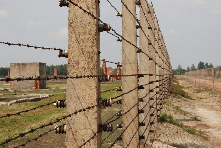 גדרות מחנה אושוויץ-בירקנאו