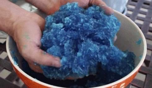 מדריכים לטיפול בגינה הביתית: אדמת על כחולה