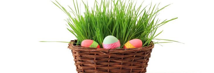 סל קש עם עשב וביצים צבעוניות