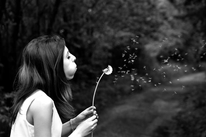 אישה מעיפה זרעי סביון בעזרת נשיפה