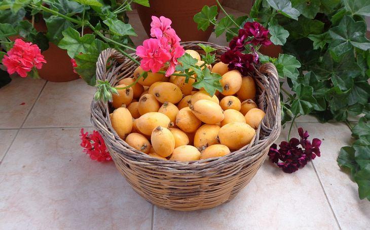 יתרונות בריאותיים של שסק: סלסלת פרי שסק