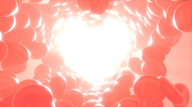 כדוריות דם אדומות