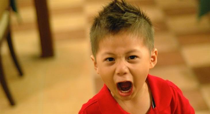 9 סיבות להתפרצויות זעם של ילדים: ילד צועק