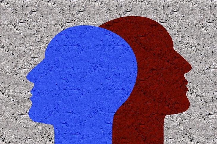 איור של שני ראשים בכיוונים מנוגדים זה לזה