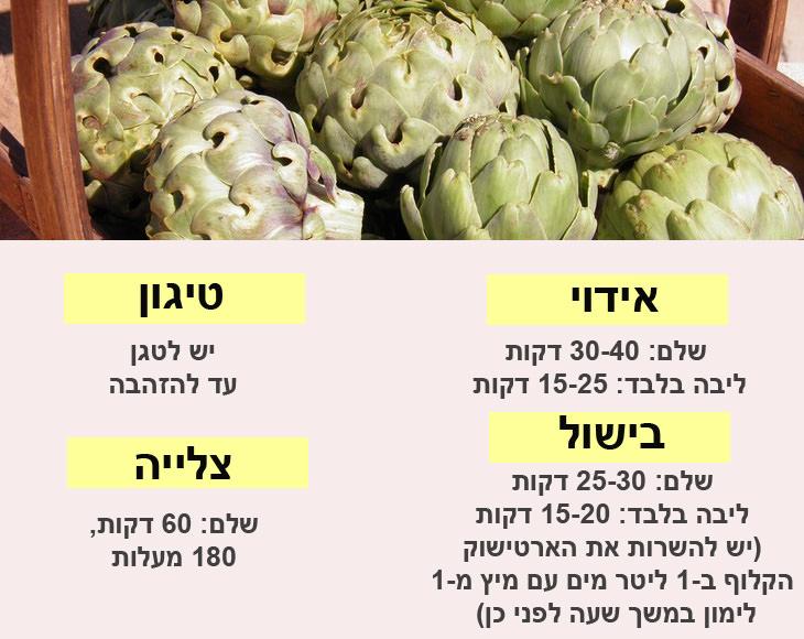 מדריך להכנת ירקות