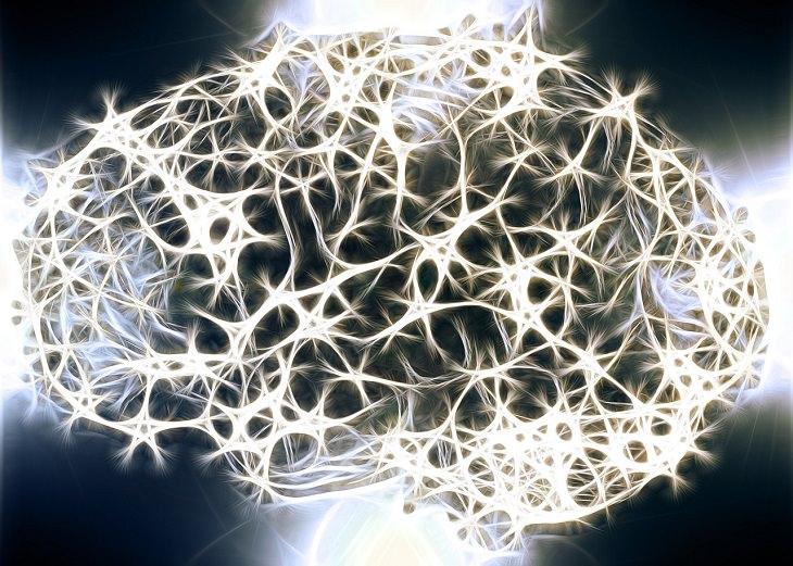 יתרונות בריאותיים של אגוז מוסקט: איור של מוח זוהר