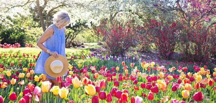 הזכויות שנולדנו איתן: אישה מחזיקה כובע בידה ועומדת בין שלל פרחי צבעוני