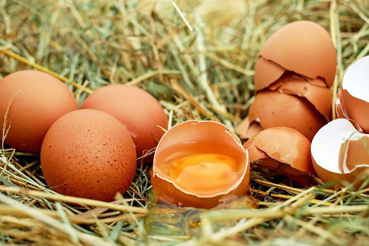 רכיבים להעלמת שלפוחיות ויבלות מכפות הרגליים: ביצים