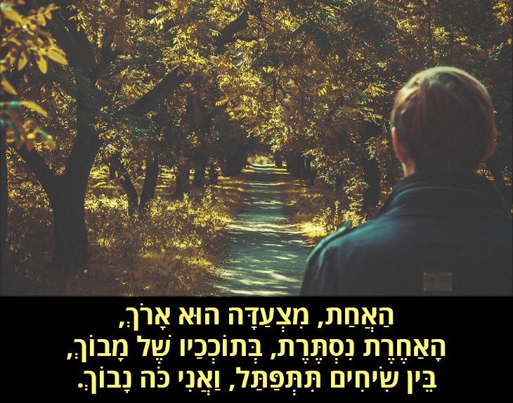 הדרך שלא נבחרה: הַאֲחַת, מִצְעַדָּה הוּא אָרֹךְ, הָאַחֶרֶת נִסְתֶּרֶת, בְּתוֹכְכַיו שֶׁל מָבוֹךְ, בֵּין שִׂיחִים תִּתְּפַּתַּל, וַאֲנִי כֹּה נָבוֹךְ.