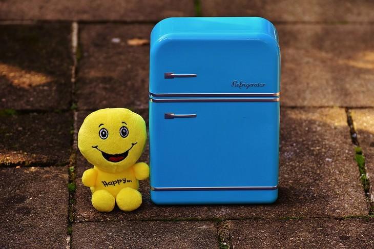 אוכל שלא צריך לאחסן במקרר: בובה מחייכת ליד מקרר צעצוע