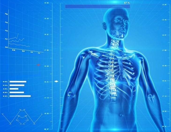 טיפים לשמירה על עצמות חזקות: איור של שלד בתוך גוף של גבר