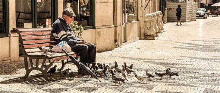 הבדל בין אלצהיימר לזקנה: איש מבוגר מאכיל ציפורים