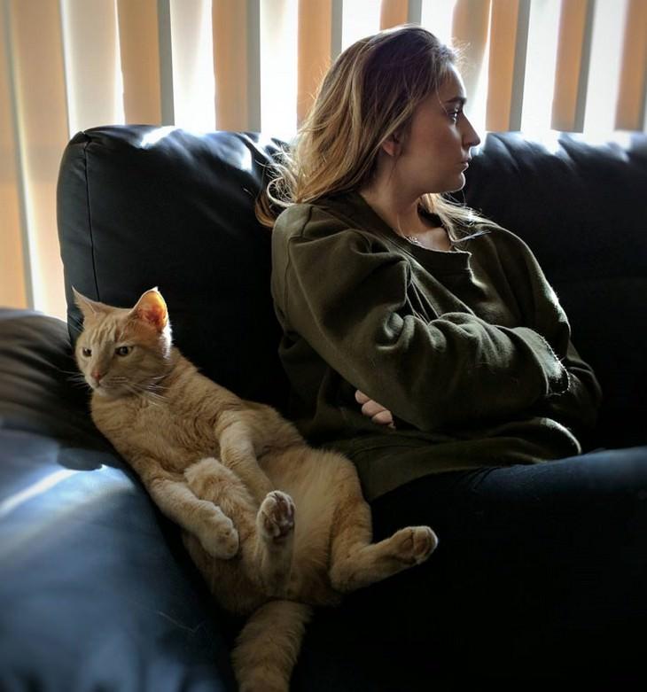 תמונות מצחיקות של חתולים: חתול ואישה יושבים זה ליד זה על הספה בידיים ורגליים שלובות