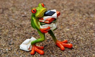 בובה של צפרדע שמחזיקה ניירת רבה בידיה