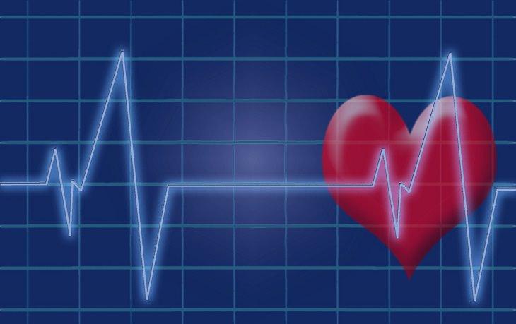 יתרונות בריאותיים של שמן נר הלילה: איור של לב ועליו קוי א.ק.ג