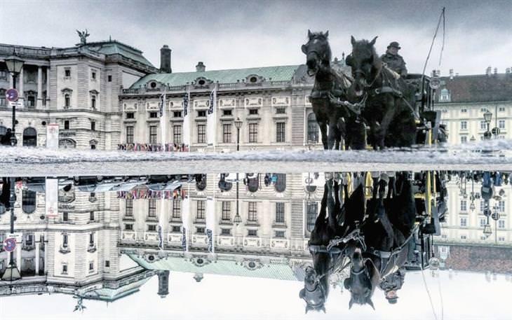 נוף עירוני משתקף בשלוליות: כרכרת סוסים משתקפת בשלולית בוינה, אוסטריה