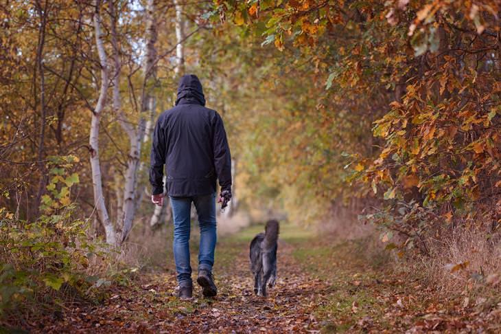 סימנים שהכלב שלכם רואה בכם כמנהיגי הלהקה: אדם וכלב הולכים אחד לצד השני בטבע