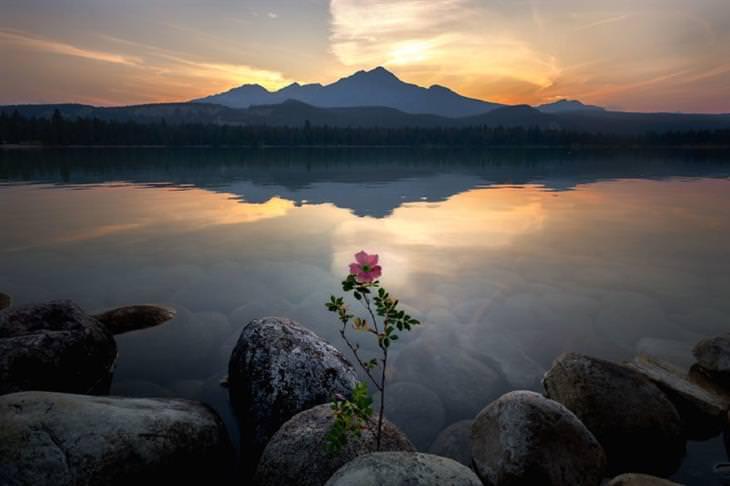 צמד צלמים מתעד את העולם: אגם אנט, הפארק הלאומי ג'ספר, קנדה