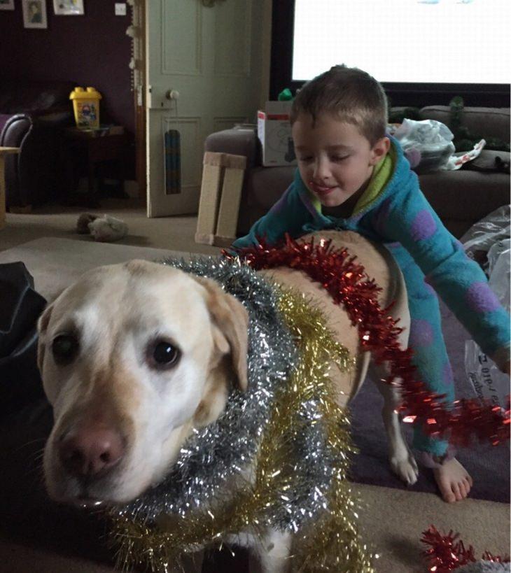 ילדים וחיות מחמד: ילד מקשט את הכלב שלו כמו עץ חג מולד