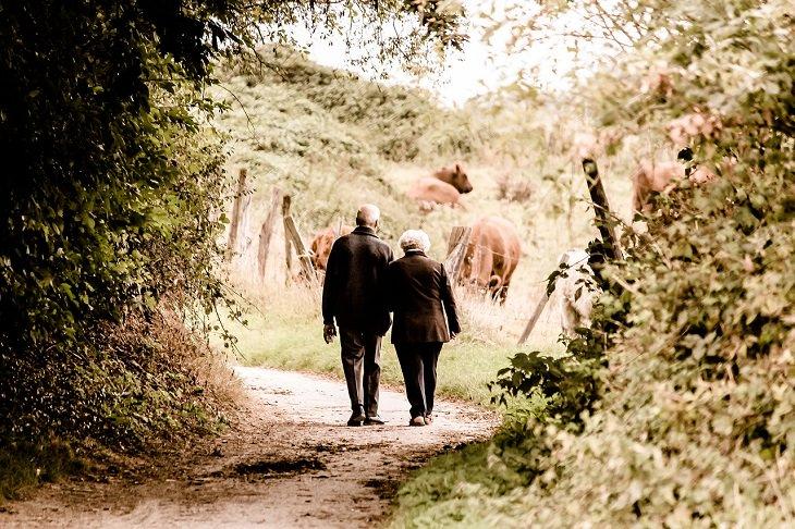 שיר על הברכה שבשכחה: זוג מבוגר משלב ידיים וצועד בשביל מוקף צמחים