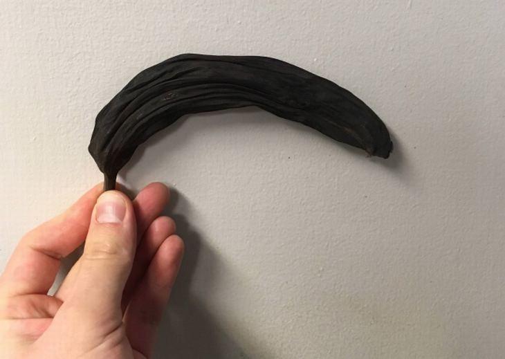 תמונות שלא רואים כל יום: בננה שנשכחה בארון והשחירה