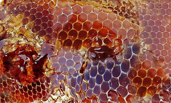 ההבדל בין דבש רגיל לגולמי: חלת דבש