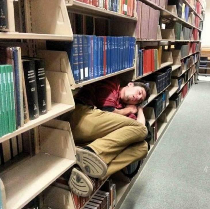 תמונות של אנשים שנרדמו במקומות משונים: גבר יישן בתוך מדף של ספרייה