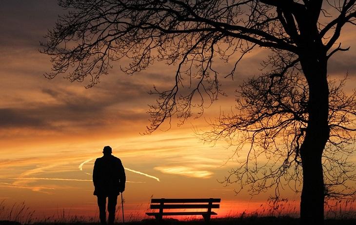 חוקי ירושה: אדם עומד ליד עץ ומביט לעבר שמים כתומים