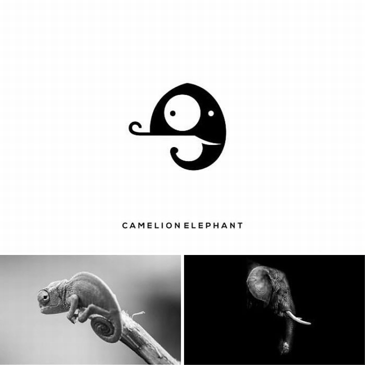 עיצובי לוגו מתוחכמים: שילוב של פיל וזיקית